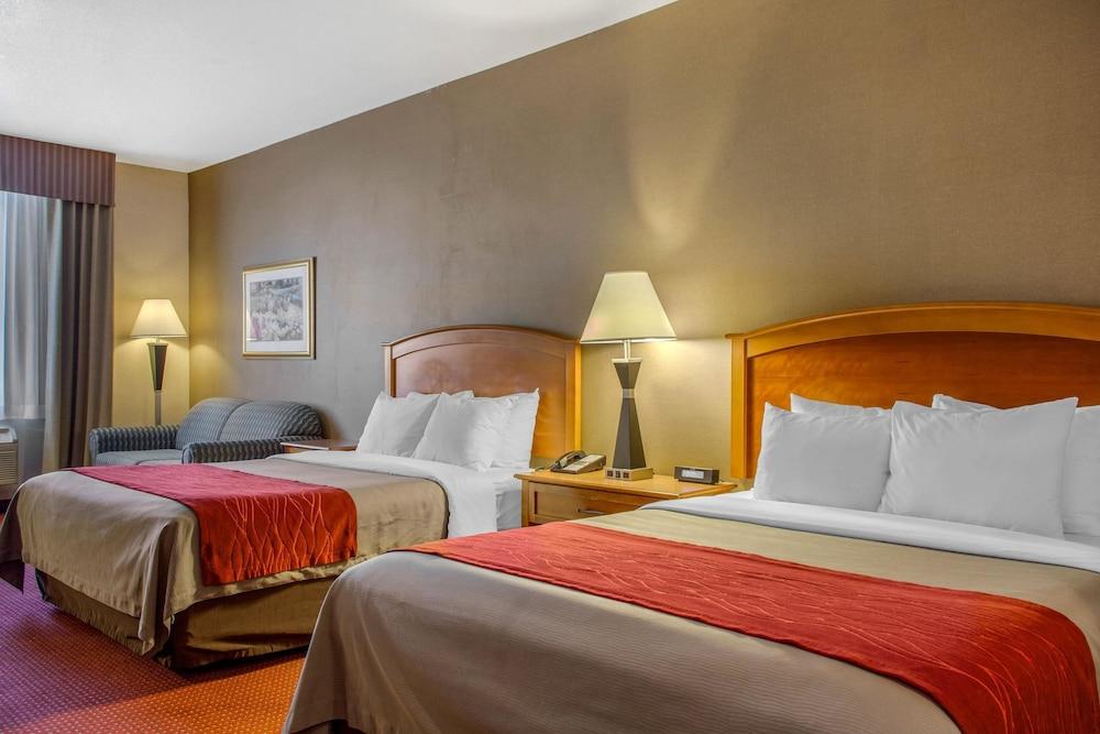 컴포트 인 & 스위트(Comfort Inn And Suites) Hotel Image 10 - Guestroom