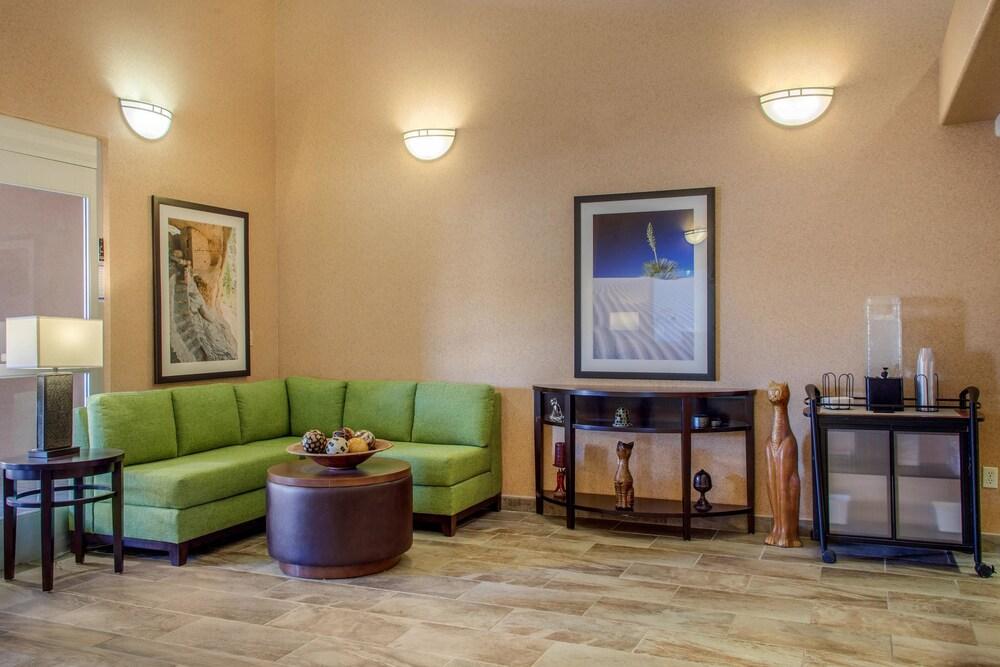 컴포트 인 & 스위트(Comfort Inn And Suites) Hotel Image 1 - Lobby