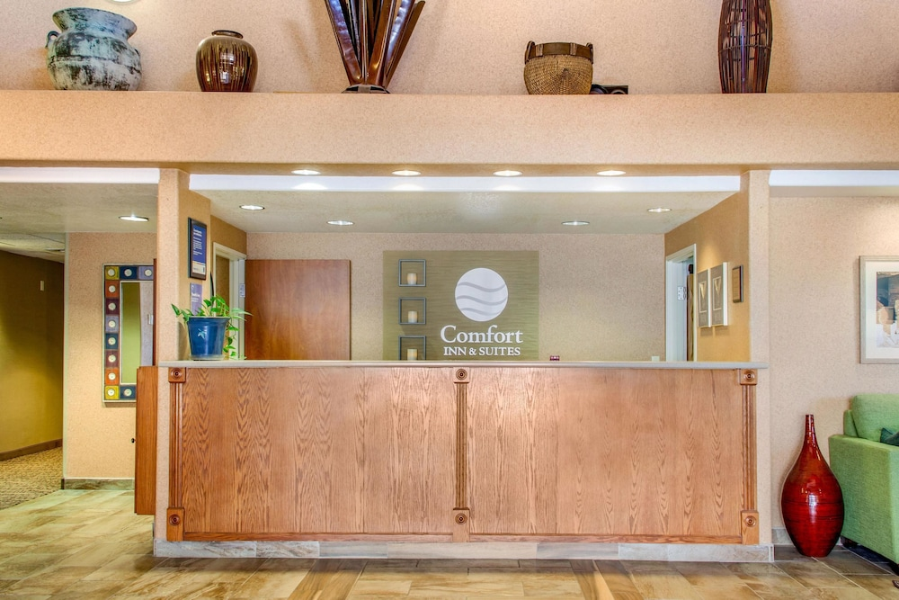 컴포트 인 & 스위트(Comfort Inn And Suites) Hotel Image 2 - Lobby