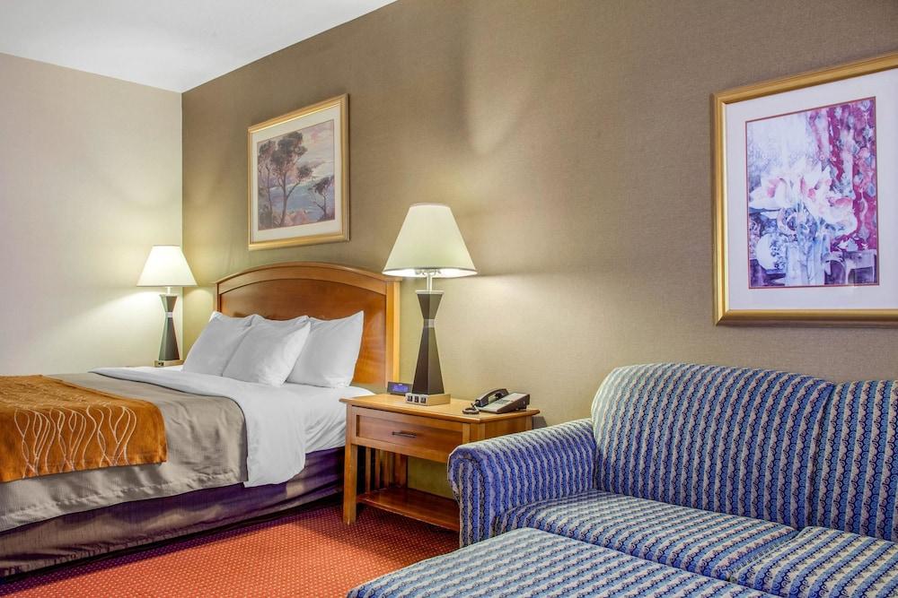 컴포트 인 & 스위트(Comfort Inn And Suites) Hotel Image 16 - Guestroom