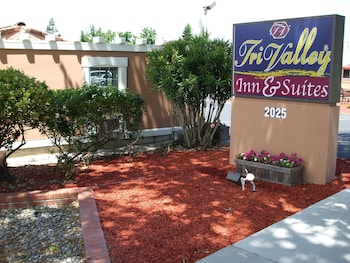 Hotel - Tri Valley Inn & Suites, Pleasanton