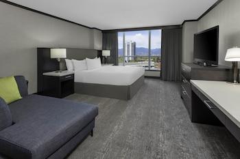 Room, 1 King Bed (Shower)