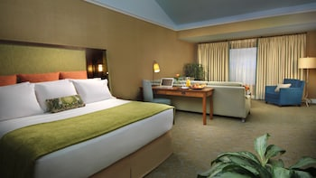 Premium Club Room, 1 King Bed (Adults Only 21+)