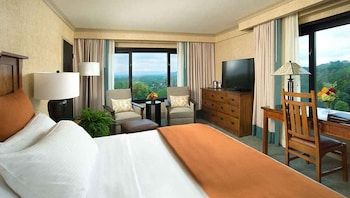 Panoramic Room, 1 King Bed, Corner