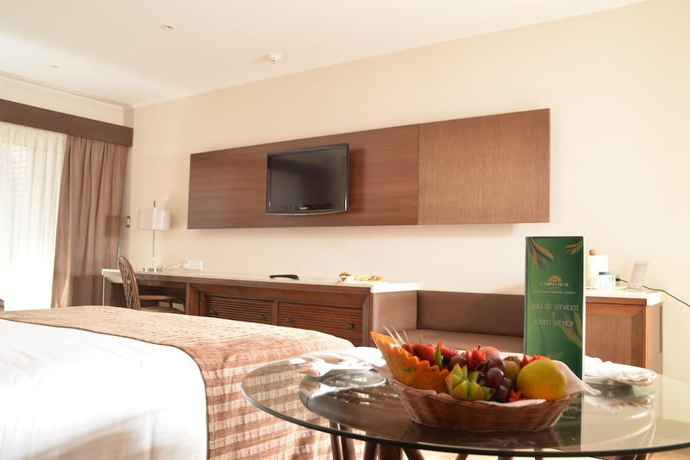 https://i.travelapi.com/hotels/1000000/450000/444500/444475/ce11be8f_z.jpg
