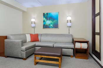 Living Area at Hyatt Place Dallas/Grapevine in Grapevine
