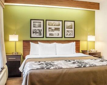 Room, 1 Queen Bed, Accessible, Non Smoking (Bathtub)