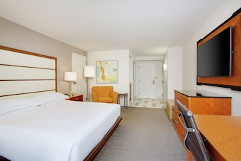King Accessible with Bathtub