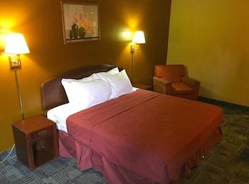 Americas Best Value Inn - Livonia / Detroit - Guestroom  - #0