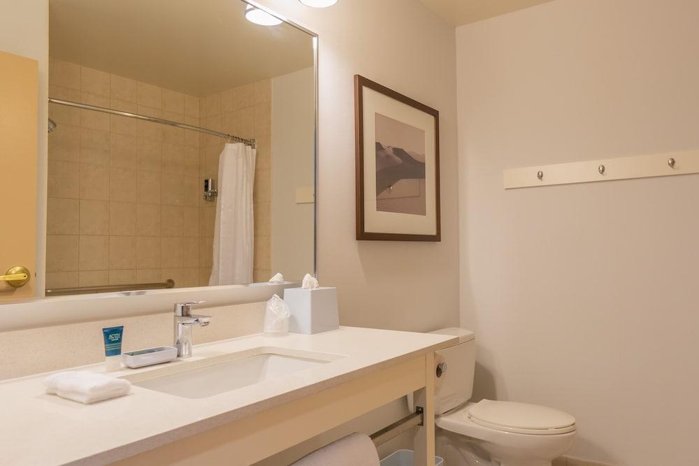 Bathroom Interior Photo