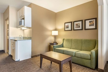 Suite, 1 King Bed, Accessible (Accessible Tub)