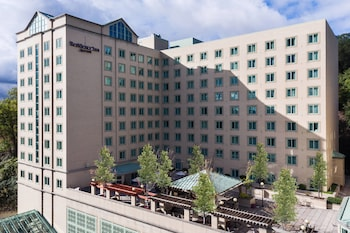 Hotel - Residence Inn Pittsburgh University/ Medical Center