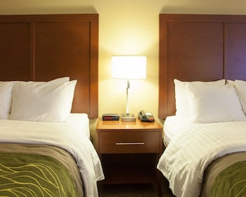 Quality Inn & Suites I-40 East - Guestroom  - #0