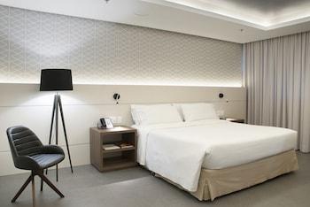 阿雷格里港假日飯店 Holiday Inn Porto Alegre