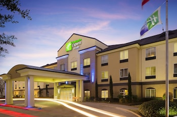 Hotel - Holiday Inn Express & Suites DFW-Grapevine