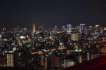 TOBU HOTEL LEVANT TOKYO City View