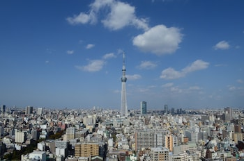 TOBU HOTEL LEVANT TOKYO View from Property