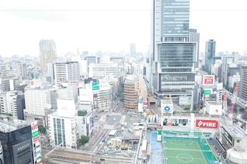 東急澀谷卓越大飯店