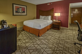 Room, 1 Queen Bed, Accessible (Roll-in Shower)
