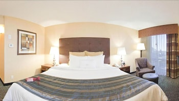 Room, 1 King Bed (Leisure)