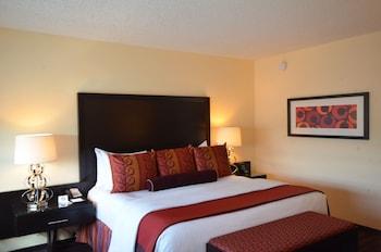 Suite, 1 Bedroom, 1 King Bed