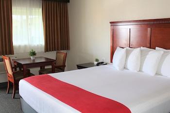 Hotel - Hotel V