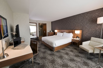 Room, 1 King Bed (Roll-in Shower)