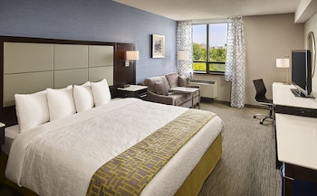 Superior Room, 1 King Bed (Lake and Park View)