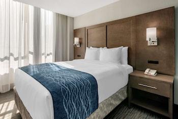 市中心 - 邁阿密港凱富套房飯店 Comfort Inn & Suites Downtown - Port of Miami
