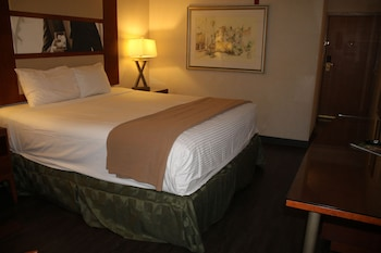 Deluxe Suite (1 King Bed Non Smoking)
