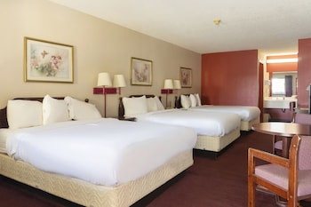 Premium Room, Multiple Beds