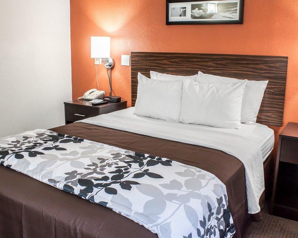 Room, 1 Queen Bed, Accessible, Smoking