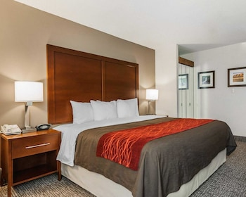 Suite, 1 King Bed with Sofa bed, Non Smoking (Upgrade)