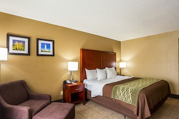 Baton Rouge Vacations - Comfort Inn Baton Rouge - Property Image 1
