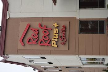 查塔努加市中心紅屋頂普拉斯套房飯店 Red Roof Inn PLUS+ & Suites Chattanooga - Downtown