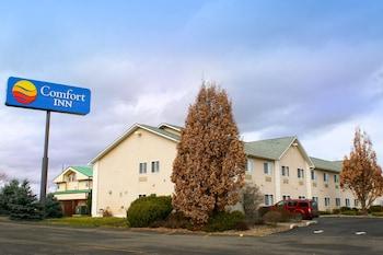Hotel - Comfort Inn Central University South