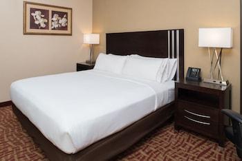 Room, 1 King Bed, Non Smoking (SPA)