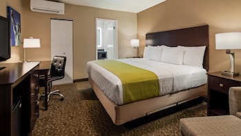 Standard Room, 1 King Bed, Non Smoking, Refrigerator (Shower Only)