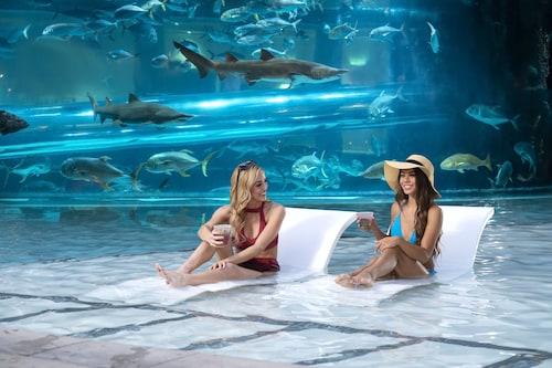 Golden Nugget Las Vegas Hotel & Casino image 7