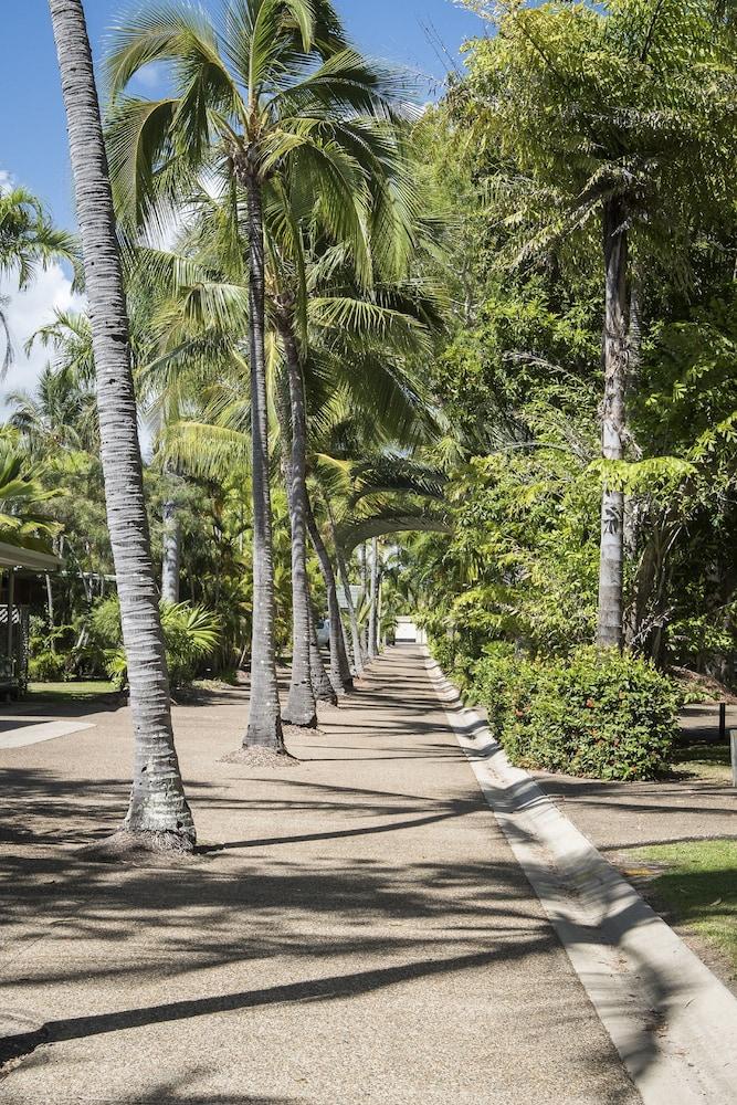 컴포트 리조트 블루 퍼시픽(Comfort Resort Blue Pacific) Hotel Image 20 - Garden