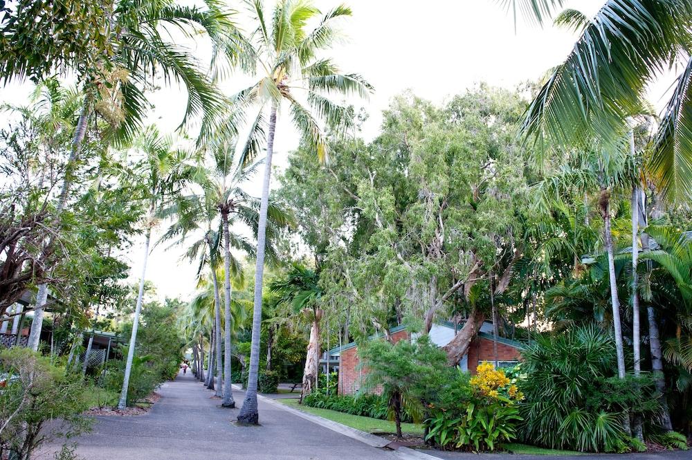 컴포트 리조트 블루 퍼시픽(Comfort Resort Blue Pacific) Hotel Image 19 - Garden
