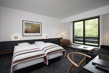 Tek Büyük Yataklı Oda (small)