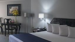 Standard Room, 1 Double Bed (habıtacıon Estandar)