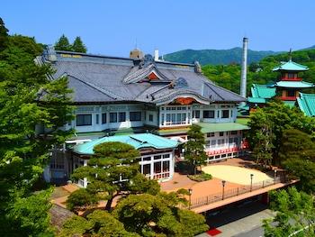 Hotel - Fujiya Hotel