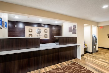 Hotel - Comfort Inn Matteson - Chicago