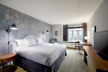 Estate King Guestroom, 1 King Bed