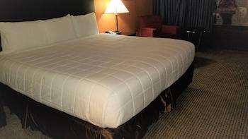 Oda, 1 En Büyük (king) Boy Yatak, Sigara İçilmez, Havuz Kenarı