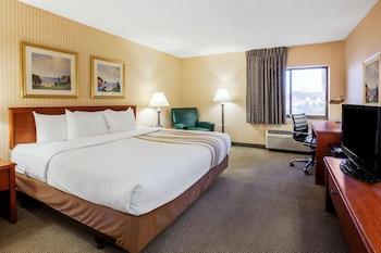 底特律南門溫德姆拉昆塔飯店 La Quinta Inn by Wyndham Detroit Southgate