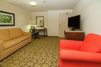 Junior Suite, Multiple Beds