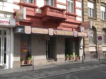 Hotel - Hotel Elbe